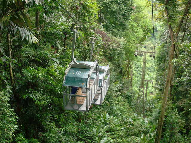 Veragua Rainforest Research & Adventure Park, Limon, Costa Rica.
