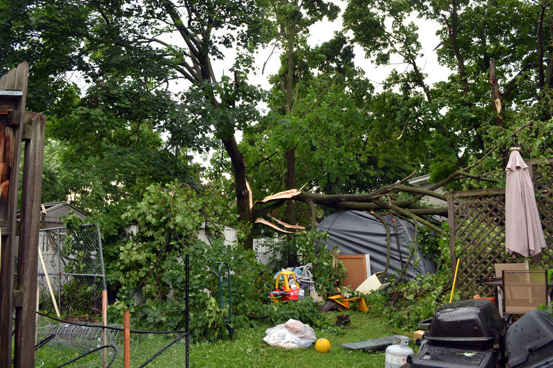A downed tree from storms in the backyard of a home on McCool Ave. in East Syracuse.