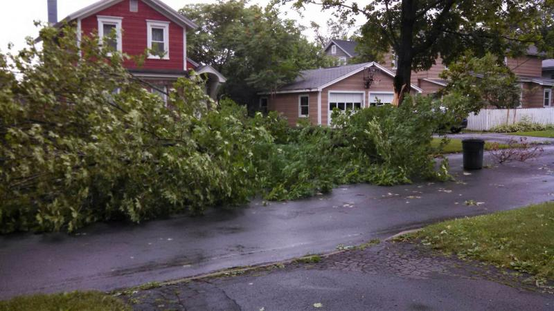 Storm damage along Ellis Street in East Syracuse