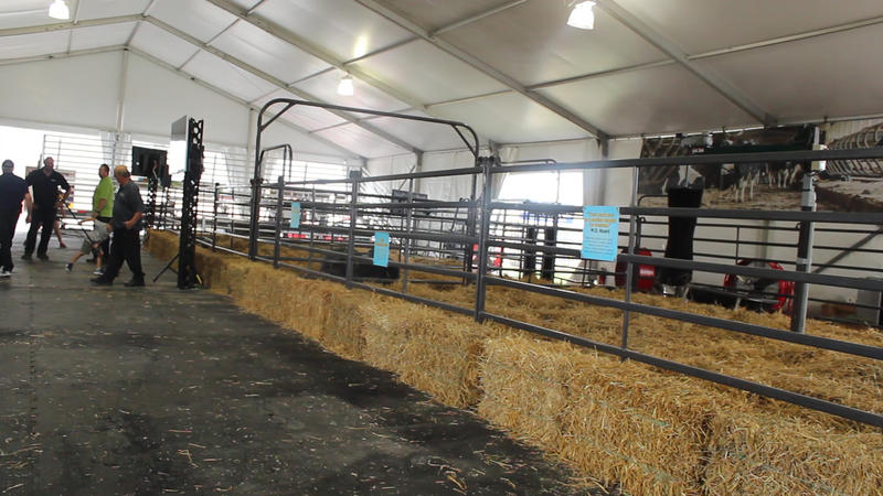 The Dairy Cow Birthing Center.