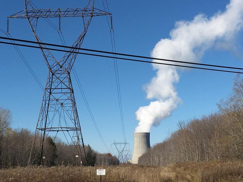 The FitzPatrick nuclear plant sits right next to the cooling tower of Nine Mile nuclear plant on the shore of Lake Ontario.