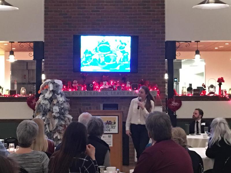 Sherri Mason discusses plastics at Buffalo event