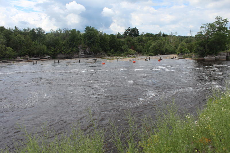 The Black River in Watertown.