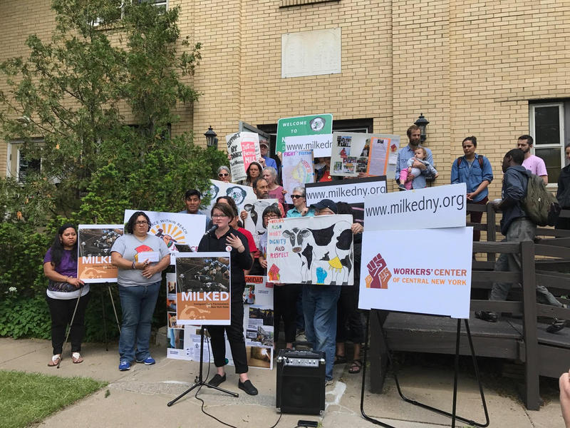 A new report interviewing 88 dairy workers in upstate New York was released in Syracuse Thursday.