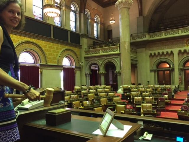 Albany Assemblywoman Patricia Fahy presides over the Assembly on Wednesday, August 9.