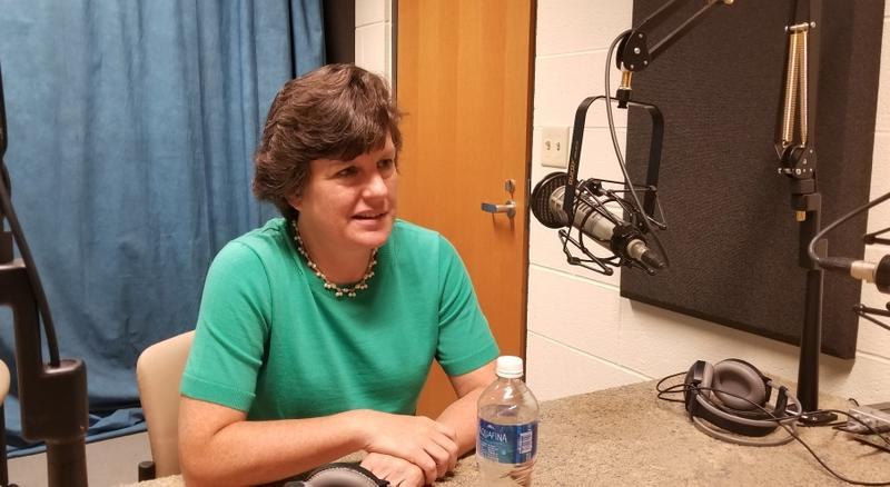 Former Syracuse Mayor Stephanie Miner.
