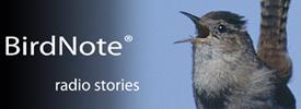 Birdnote.org
