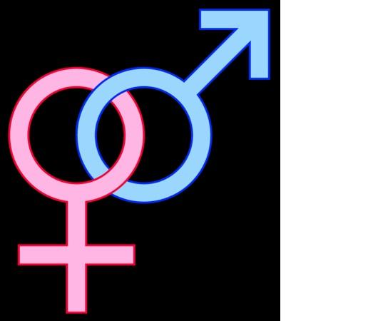 gender identity 7 essay The factors that influence gender identity - assignment example  get more essays: gender differentials in the allocation of education have a marked effect on .