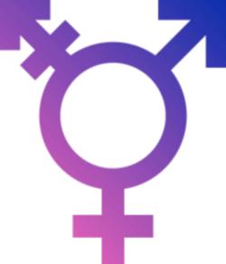Transgender Anti-Discrimination Bill Will Not Face MD Voters ...