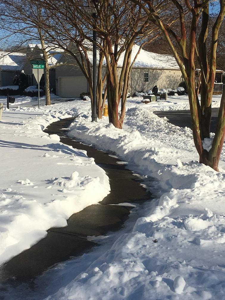Sidewalk in Salisbury Subdivision