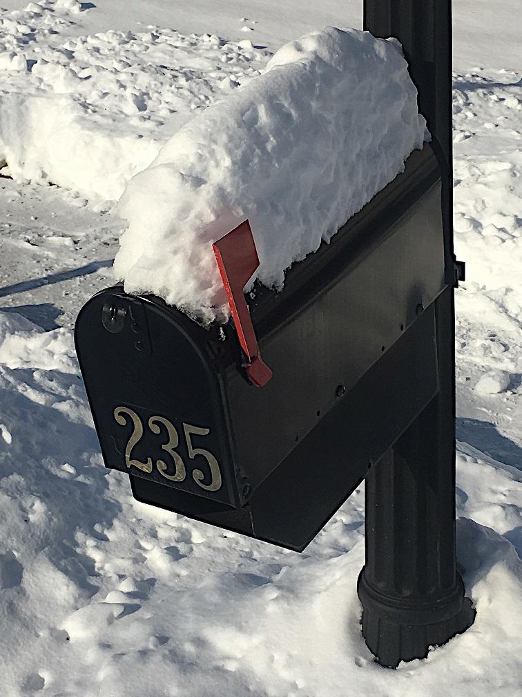 Snowed In Mailbox