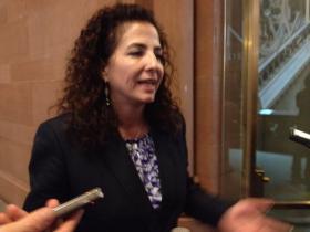 NY Democratic State Senator Diane Savino