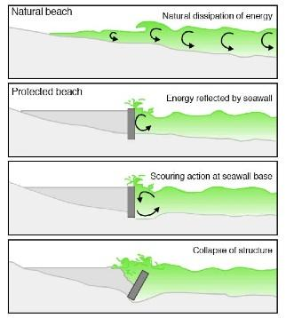 Seawall Collapse Illustration