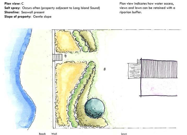Sketches on the Sea Grant website help homeowners plan what kind of landscaping makes sense to help protect their homes