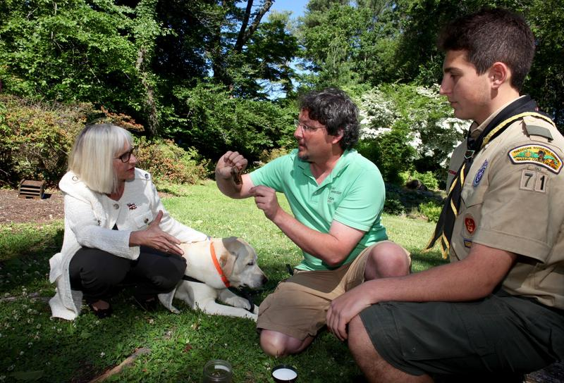 North Hempstead Town Supervisor Jodi Bosworth and Yianni Biniaris listen to biologist Eric Powers as he holds one of the 2,000 bats enjoying a robust summer diet of mosquitoes at Clark Botanic Garden in Albertson, Long Island.