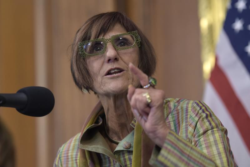 Rep. Rosa DeLauro, D-CT3, speaks during a news conference about the Zika virus on Capitol Hill in Washington in September.