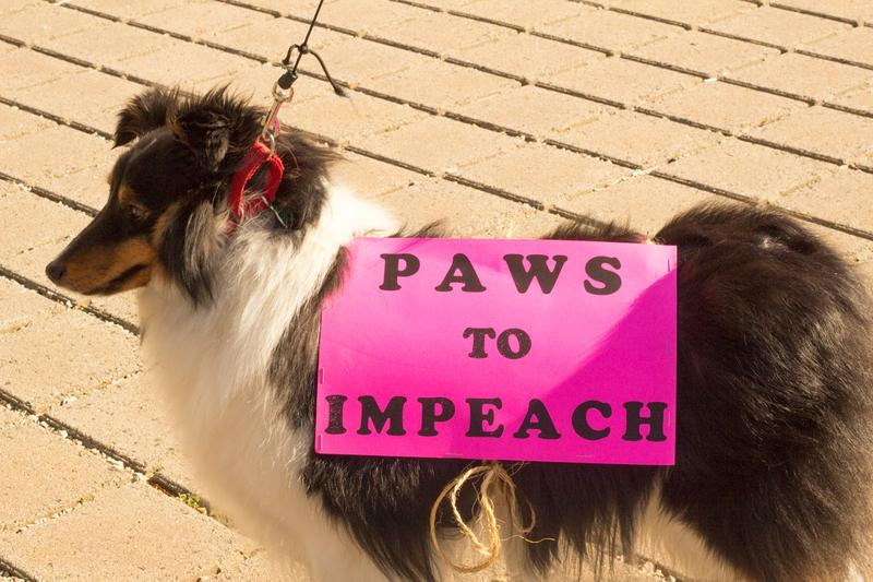 At least one canine protestor showed up.