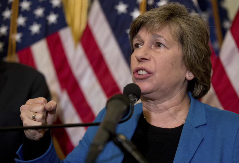 American Federation of Teachers President Randi Weingarten speaks at a news conference on American labor on Capitol Hill in Washington in 2017.