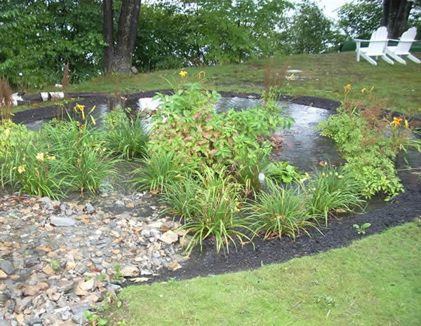 A rain garden in Leominster, Mass.