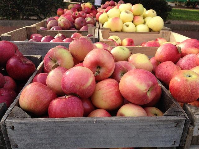 Apples for sale at an urban farmers market that accepts USDA SNAP benefits using an electronic balance transfer card.