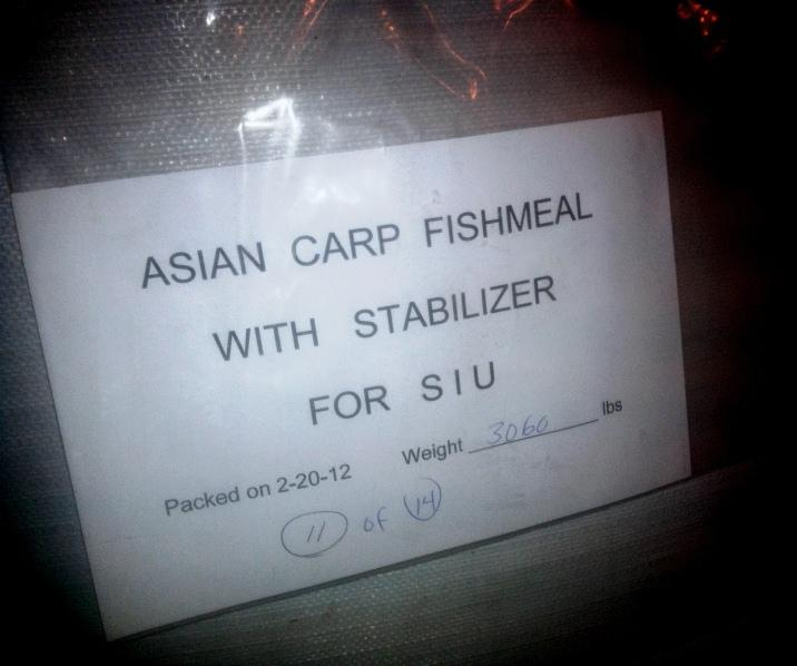 SIU Researchers package ground up Asian Carp for fishmeal