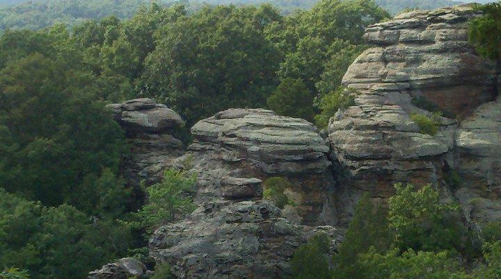 A Conversation With Amanda Patrick With The Shawnee National Forest Wsiu