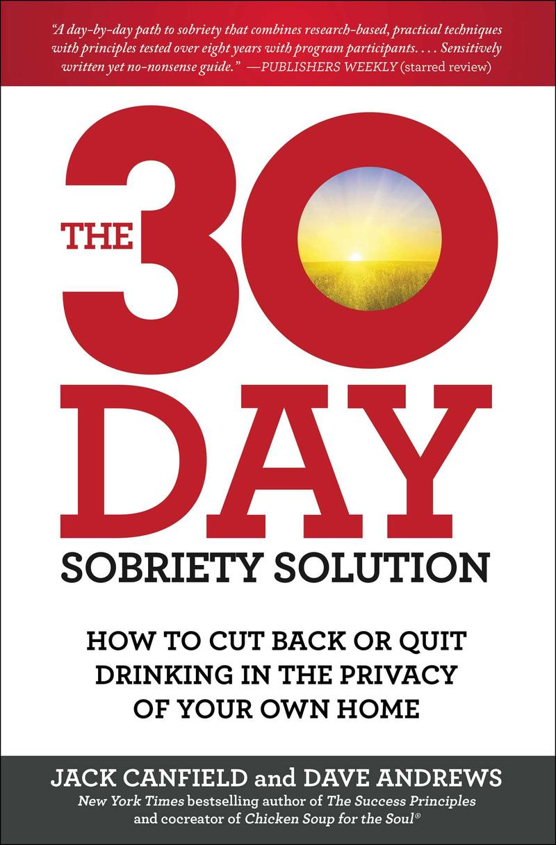 book cove for The 30 Day Sobrity Solution