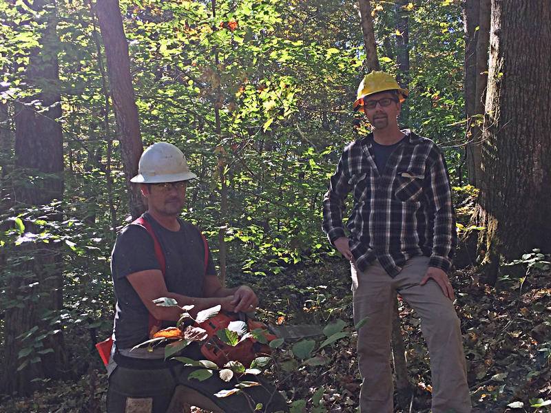 Logger Dave Wunderlich, left, and IDNR Forester Benjamin Snyder, right in Trail of Tears State Forest.  October 11th, 2016.