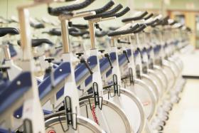 rows of bicycles