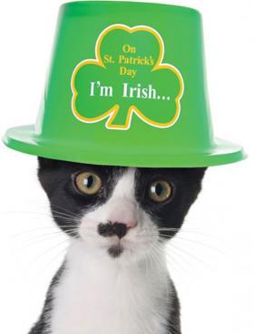 Are you Irish, too?