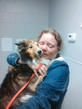 Relieved owner cried happy tears to have her dog back; Sadie was found stuck in a tree after the tornado. The Central Oklahoma Humane Society posted her picture online to find her owner.