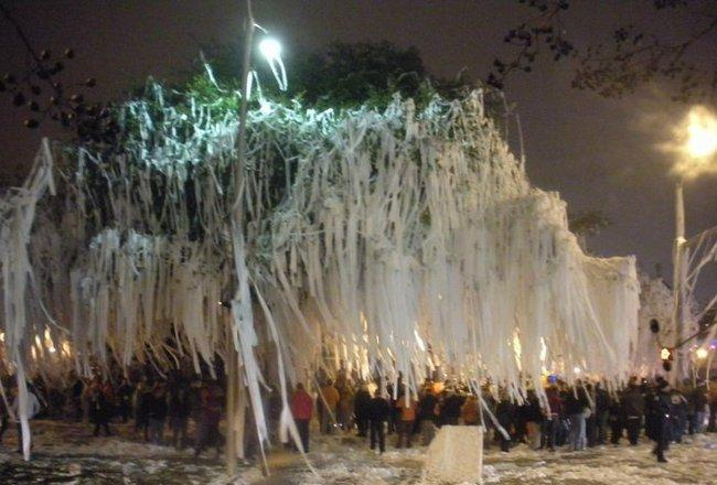 Toomer's Corner after Auburn won the BCS Championship.  Alabama fan Harvey Updyke is awaiting trial after being accused of poisoning the oak trees in 2010.