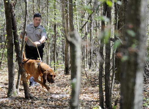 Blaze is a Forestry Commission dog with Alabama. He's stationed in south Alabama.