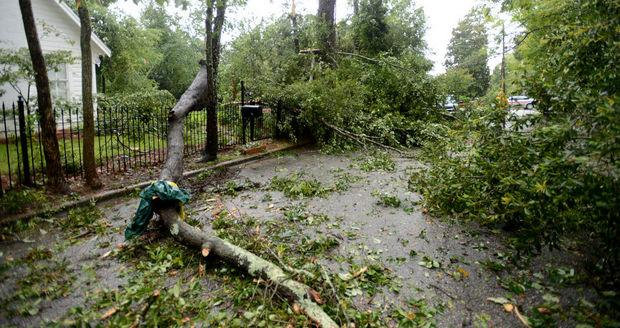 Storms left flooding, toppled trees in their wake Tuesday July 24, 2013.