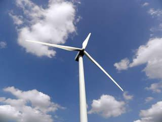 The Baldwin County Commission has unanimously voted to ban a wind farm.