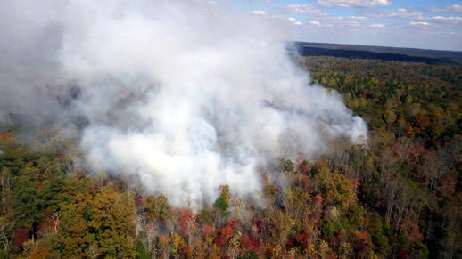 Sipsey Wilderness fire