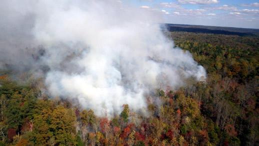 Sipsey Wilderness fire