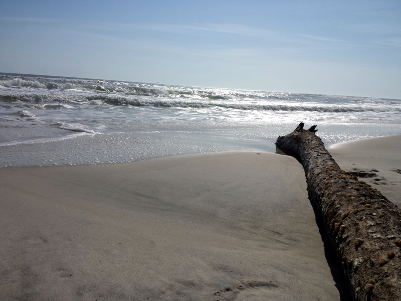 Dauphin Island West End Beach