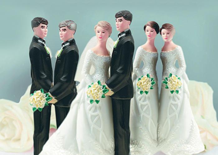 History of Same Sex Marriage - Family Tree & Family