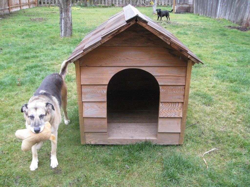 National Dog House Repairs Month Alabama Public Radio
