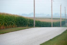 Corn thrives along a road in central Illinois in mid-August 2013.