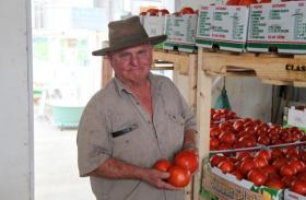 Vegetable farmer Tom Goeke of St. Charles, Mo., sells his Red Deuce tomatoes wholesale at about $1.50 per pound. (Kristofor Husted/Harvest Public Media)