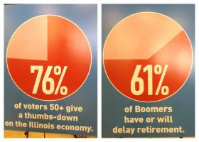 Statistics from AARP Illinois' survey.