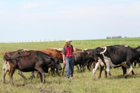 Devan Green walks among his cattle on the pasture land he rents from his family.