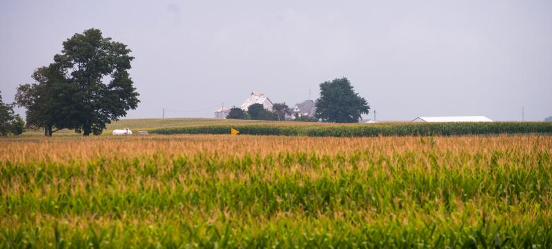 Livingston County, Ill. farmers received the highest crop insurance payout in the nation.