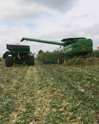 During corn harvest this September, one of farmer Len Corzine's new combines fills a wagon, which is also new.