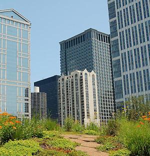 The Chicago City Hall Garden