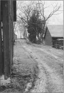 Pathway on the Manske-Niemann farm