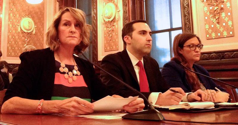 Senate Republican Leader Christine Radogno