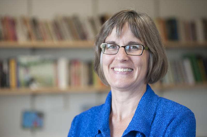 Professor Maria Krysan